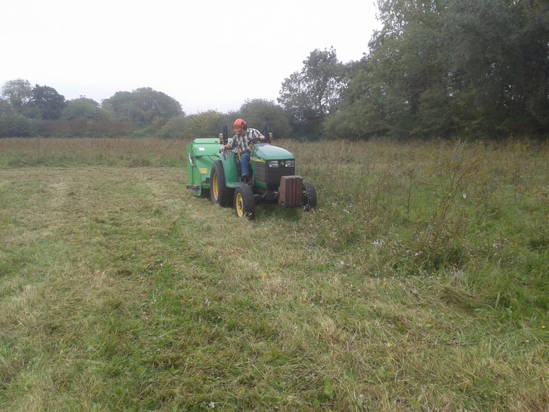 Mowing and removal of vegetation by Rory Hart of Wildlife Works (link...). This supplements removal by grazing. Only part of the site will be mown in any one year